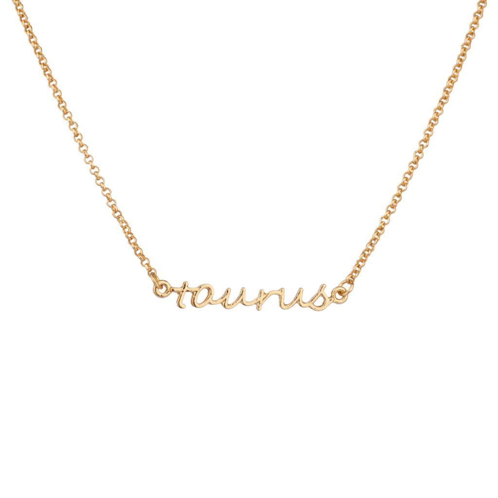 Taurus bull horoscope zodiac word pendant necklace necklaces taurus bull horoscope zodiac word pendant necklace aloadofball Choice Image