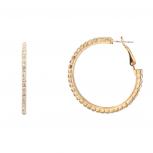 Star Studded Embellisted Hoop Earrings Clear