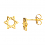 Gold Tone Star Of David Jewish Mini Cutout Star Stud Earrings
