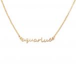Aquarius Water Bearer Horoscope Zodiac Word Pendant Necklace