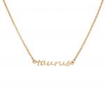 Taurus Bull Horoscope Zodiac Word Pendant Necklace